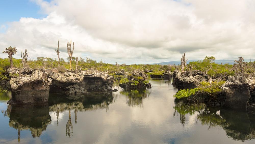 Voyage à pied : Evasion liberté aux galápagos