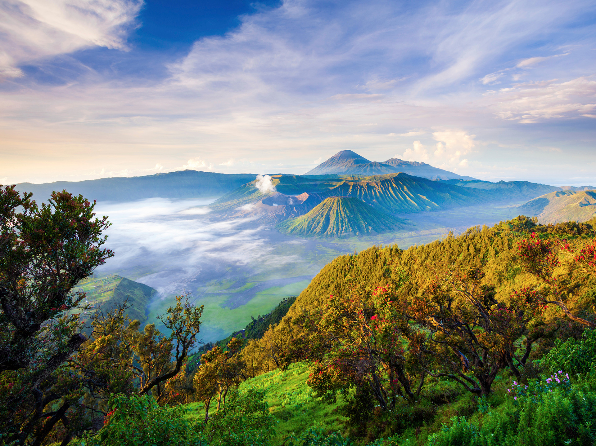 Voyage à pied : Volcans de java-est
