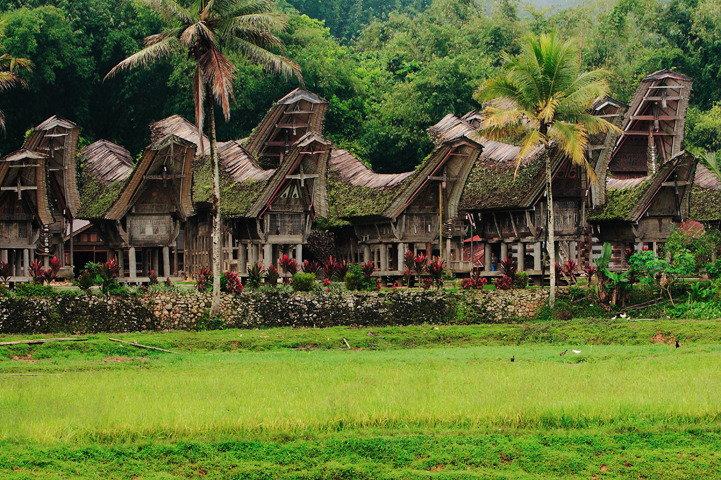 Voyage à pied : Sulawesi, java & bali: kaléidoscope indonésien