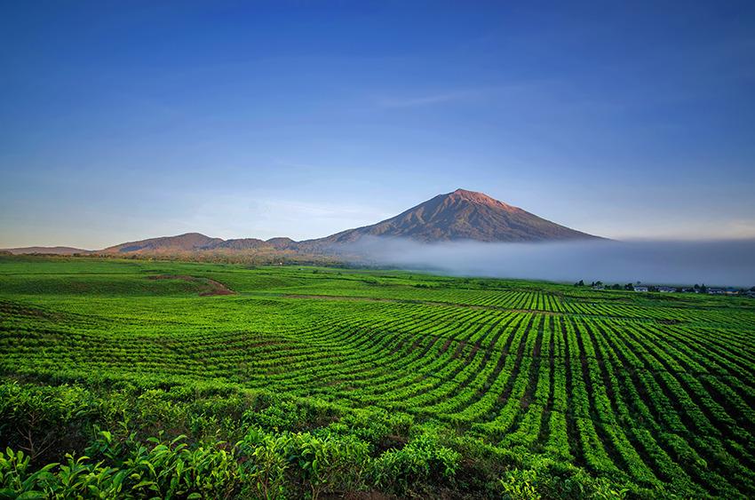Voyage à pied : Sumatra: la vallée secrète