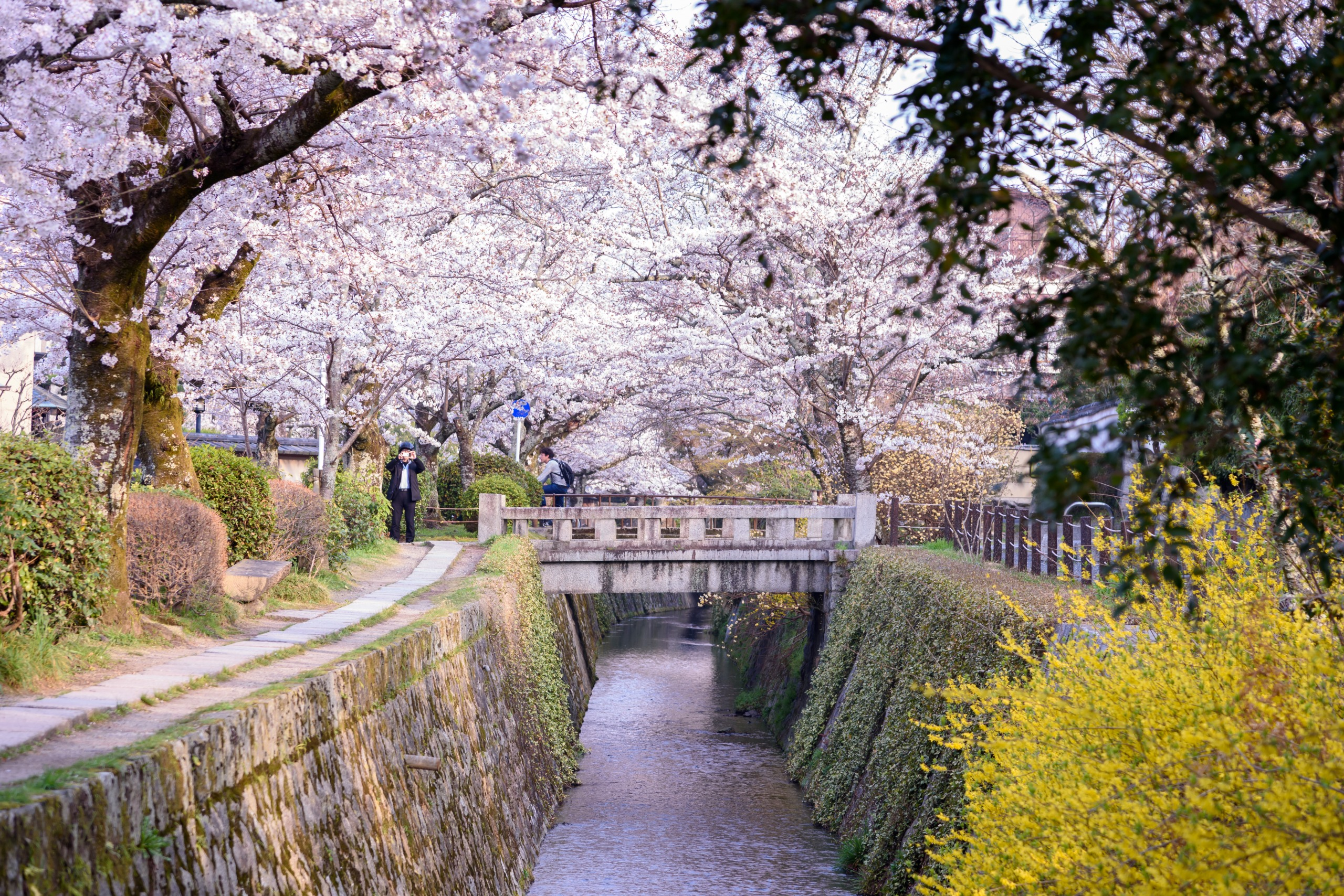 Voyage à pied : Le japon, une île aux mille facettes