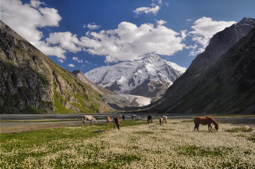 Image Le long des sentiers kirghizes à cheval