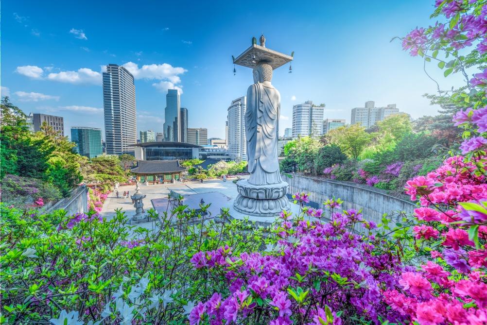Voyage à pied : Evasion à l\'automne coréen