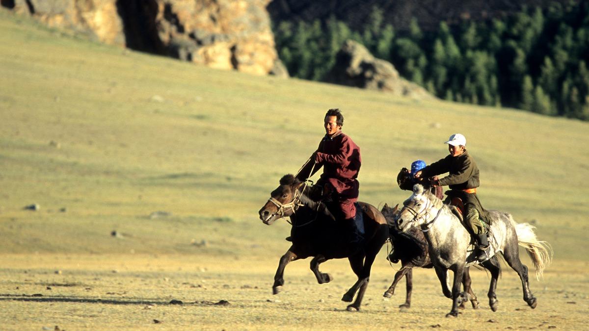 Voyage avec des animaux : Mongolie : La chevauchée confort
