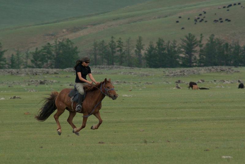 Voyage avec des animaux : Chevauchée de l\'orkhon
