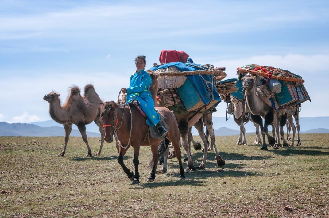 Voyage à pied : Transhumance nomade