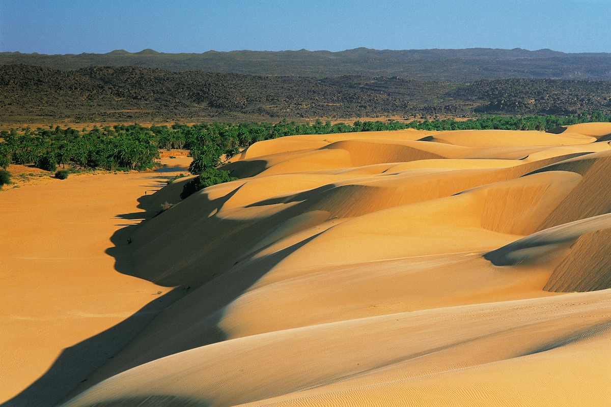 Voyage avec des animaux : En randonnée chamelière en pays oulad sassi