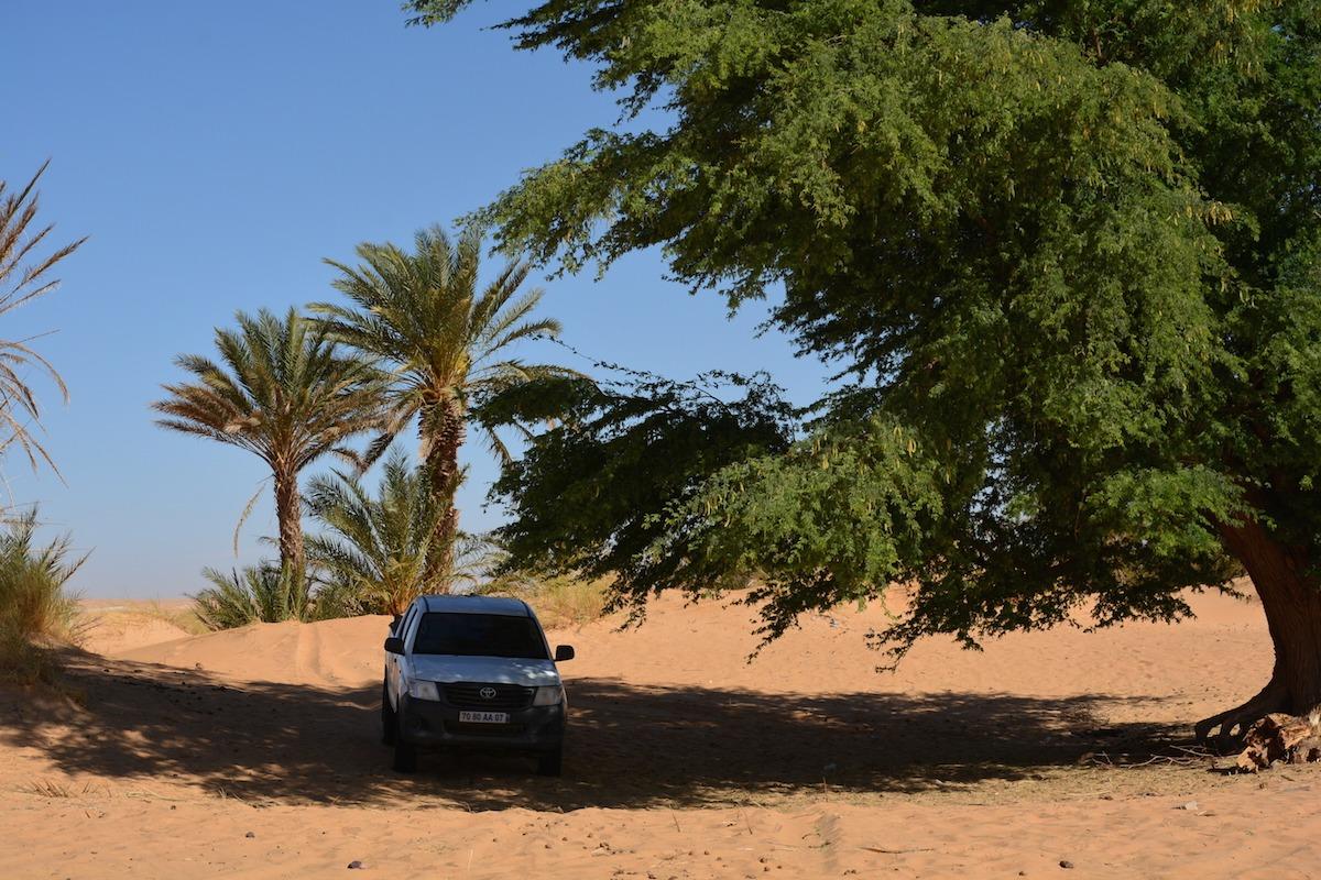 Voyage à pied : Mauritanie : Le grand raid entre adrâr et tagant
