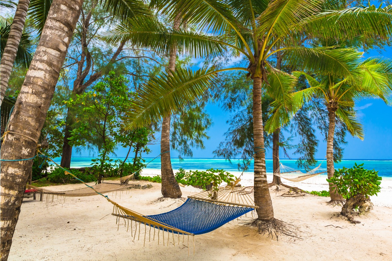 Voyage à pied : Tanzanie : Zanzibar: un paradis balnéaire