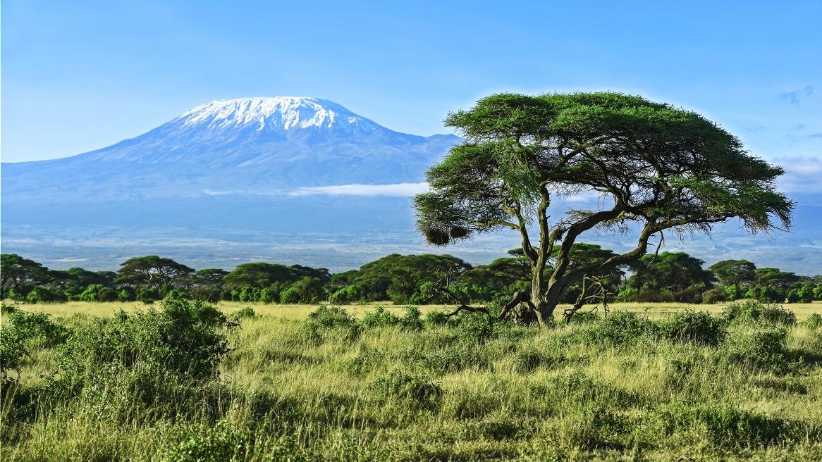 Voyage à pied : Tanzanie : Machame route : 6 jours / 5 nuits dans la montagne